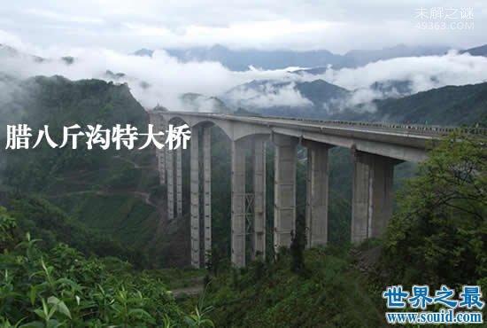 亚洲第一高墩大桥,赫章特大桥(最高墩高195米)