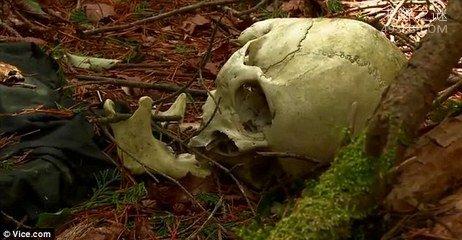 日本自杀森林,为什么都选择在这里结束生命?